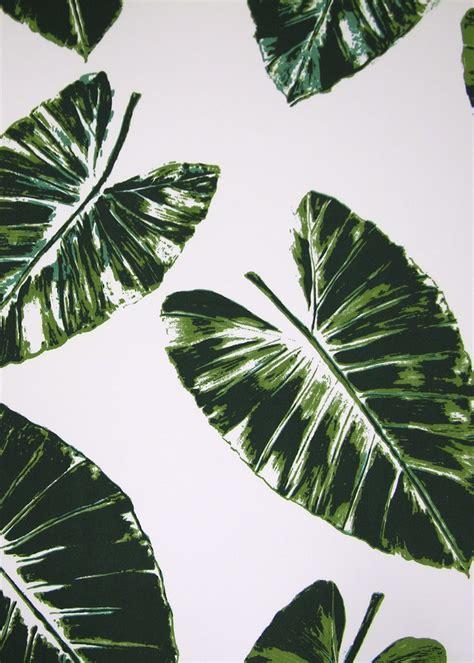 banana palm wallpaper tumblr palm leaves by rose cumming print patterns pinterest