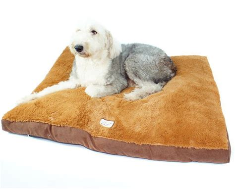 kong dog bed petsmart kong dog bed rosalyn orthopedic futon mattress best home