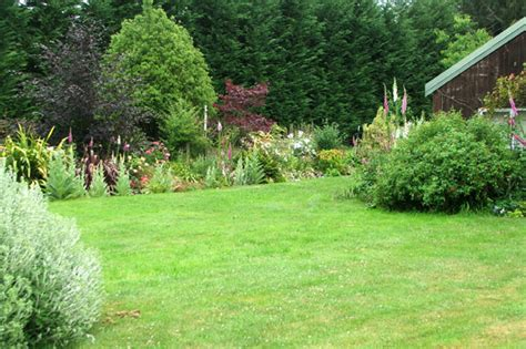 lawn garden apple tree garden