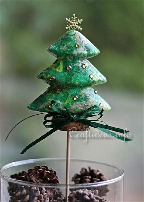 christmas tree plant pict information about home