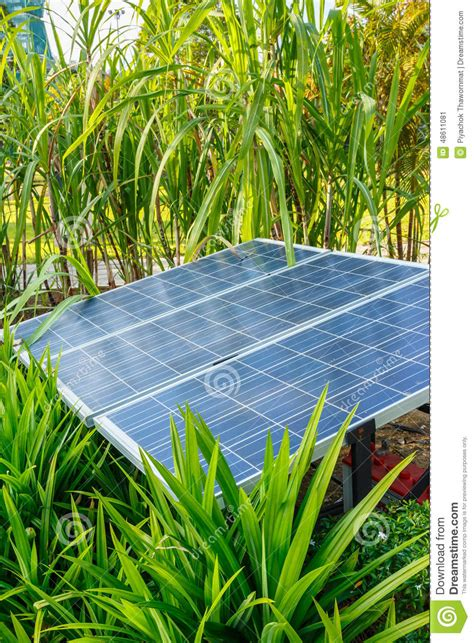 the panels of solar cell in a garden stock photo image