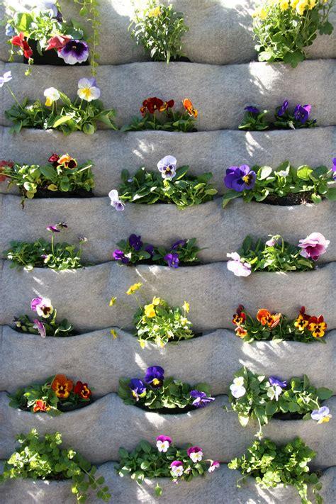 garden club plants living wall vital   blog