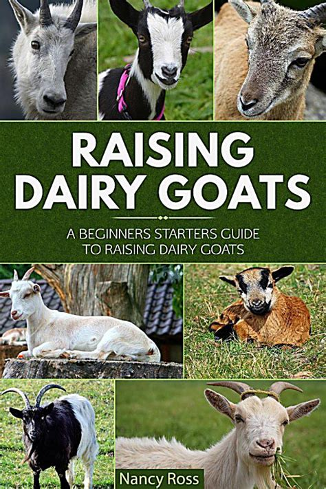 raising dairy goats a beginners starters guide to raising