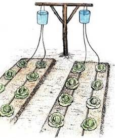 home irrigation systems 25 best ideas about drip irrigation on home