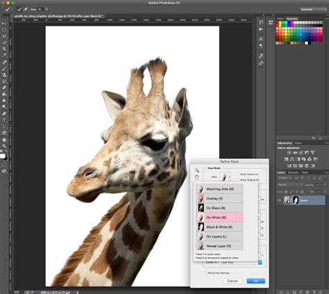 photoshop cs5 tutorial cut out background how to remove background photoshop cut out an image