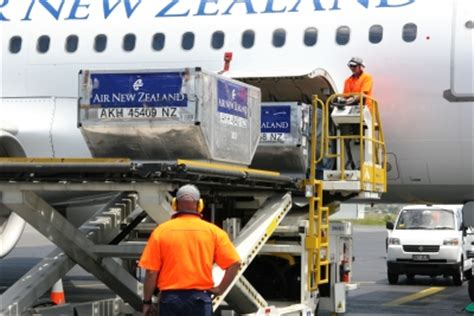 air new zealand wins air cargo cartel the loadstar