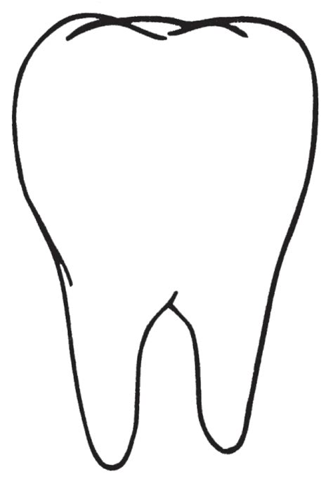 tooth templates free teeth clipart best