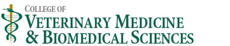 Colorado State Veterinary School Dvm Mba by Dvm Program Graduation Information