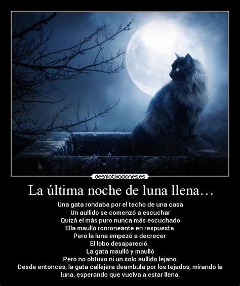 una noche un gato 8484703169 la 250 ltima noche de luna llena desmotivaciones