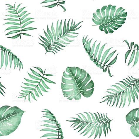 leaf pattern identification topical palm leaves pattern stock vector art more images