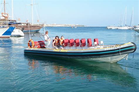 on a boat with a tiger tiger boat paphos aktuelle 2017 lohnt es sich
