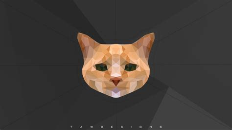 wallpaper poly cat cat photo manipulation low poly animals wallpaper