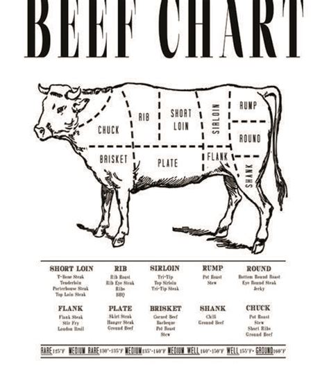 beef butcher diagram pin printable beef cut diagram house of god on