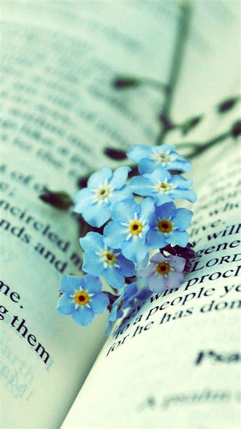 blue flowers   book wallpaper  iphone wallpapers