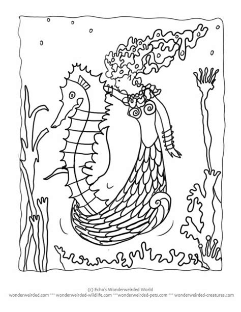 hard seahorse coloring pages seahorse pictures to color many interesting cliparts