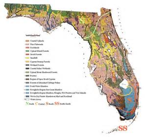 florida vegetation map island fnps presentation 2009