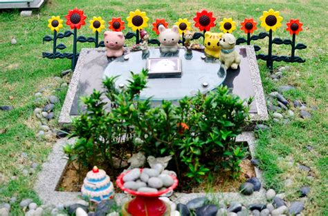 pet memorial garden funerals malaysia i transparent