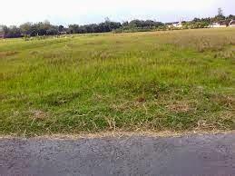 Tanah Kering Murah Sidoarjo