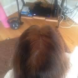 hair cuttery 20 avis coiffeurs amp salons de coiffure