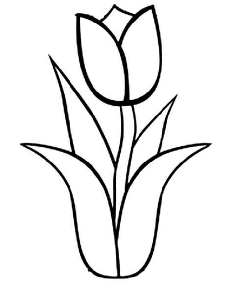 giant flower coloring page tulipe 38 nature coloriages 224 imprimer