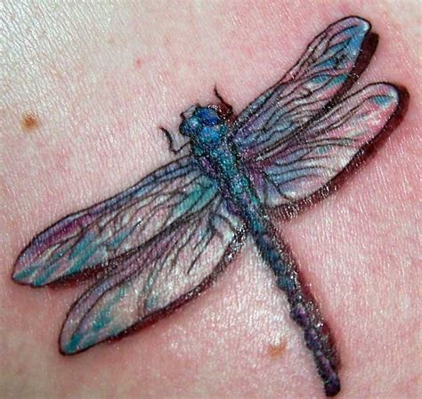 hartford county tattoo realistic dragonfly by alana lawton tattoonow