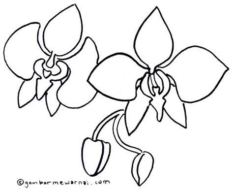 gambar bunga anak sd mewarnai bunga anggrek gambar