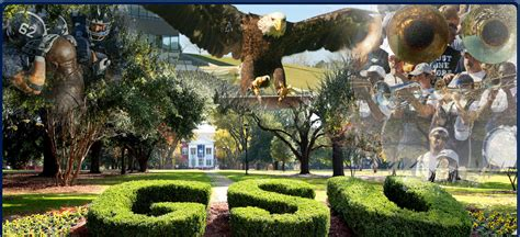 Ga Southern Mba by Southern Images Damon