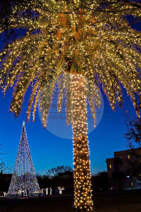 charleston south carolina christmas lights christmas in historic charleston richard ellis