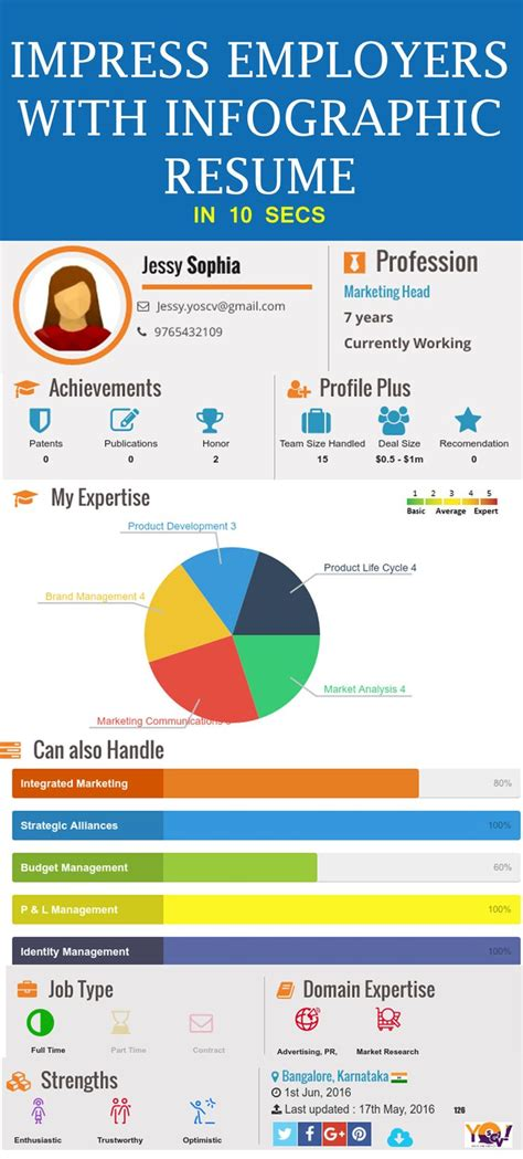 1212 Best Images About Infographic Visual Resumes On Pinterest Cool Resumes Behance And Self Career Infographic Template