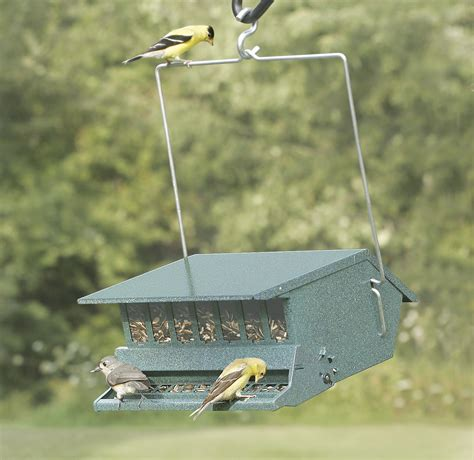 duncraft com squirrel proof birder s choice bird feeder