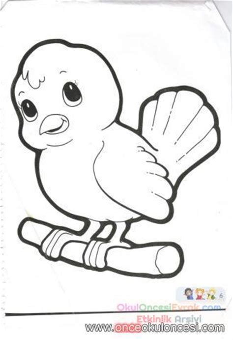 kuş resmi boyama sayfaları resmi   preschool activity