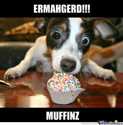 Muffin Top Meme - muffin by serkopat meme center