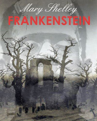 libro yna2 frankenstein york notes frankenstein york notes for as a2 york notes advanced storia della letteratura e critica