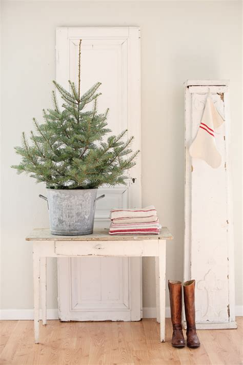 table top trees inspiration tabletop tree simply grove