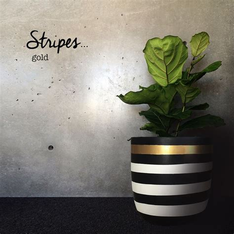 white pot stripe pot black white with gold stripe medium