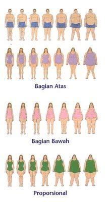 bentuk tubuh ideal wanita  pria diet sehat