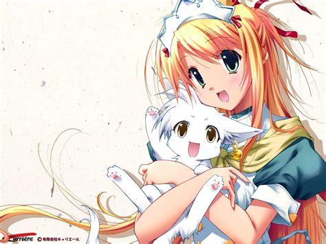 wallpaper anime cat girl star light images anime girl with cat kitten hd wallpaper
