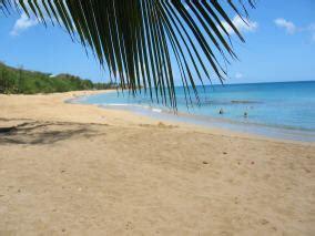 Nature Et Découverte Hamac by G 238 Te Deshaies Guadeloupe Villa Chantevent Location