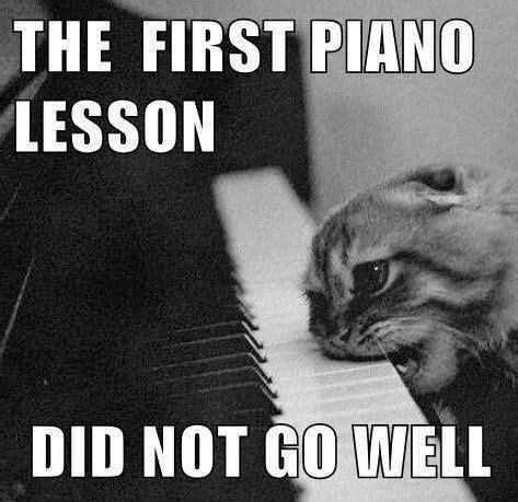 Piano Memes - piano meme my randomness pinterest piano and meme