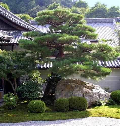japanese gardens elements trees 1
