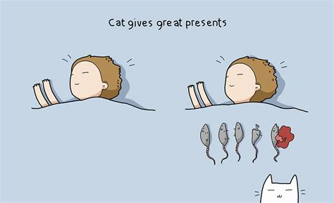 un gato a cat 10 purrfect benefits of having a cat