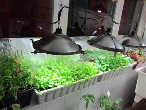 inside greenhouse ideas diy indoor greenhouse