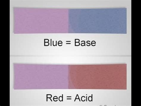 How To Make A Litmus Paper - understanding the litmus paper test for acids and bases