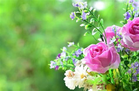 fiori da balcone estivi 7 fiori estivi per il balcone pollicegreen