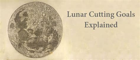 cutting hair by moon for growth 2014 lunar cutting goals explained and other faqs morrocco method