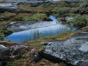 The Interior Plains Vegetation Hudson Bay Arctic Lowlands Canadian Landform Region S