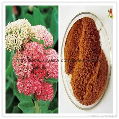 green coffee bean extract 50% chlorogenic acids ya s 002