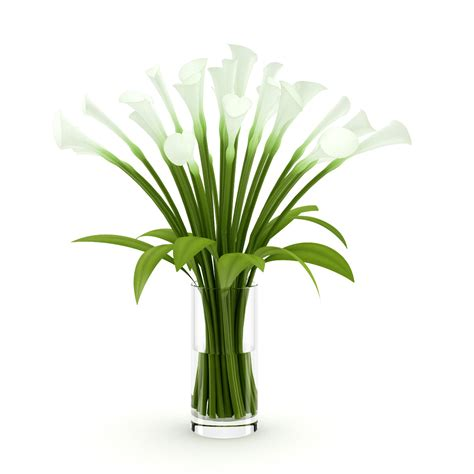 Lilies In A Vase by Lilies In Vase 3d Model Max Obj Fbx C4d Cgtrader