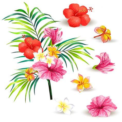 simbolo dei fiori simbolo ibisco simbolo ibisco ibisco foto e vettori gratis