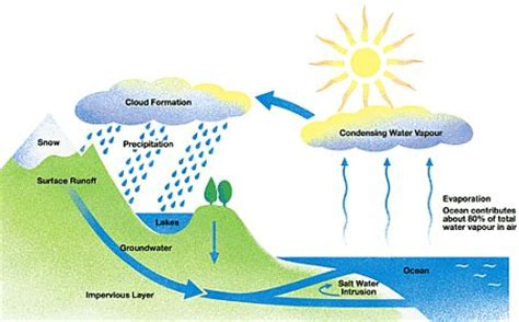 the water cycle | technoscience